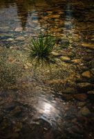Roklanský potok 3