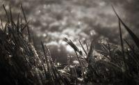 velikonoční sníh