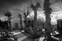 lípy na hřbitově